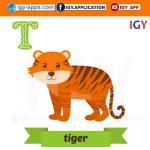 الحروف الأبجدية بأسماء الحيوانات 🖨️ إنجليزي 🖨️ وسائل تعليمية